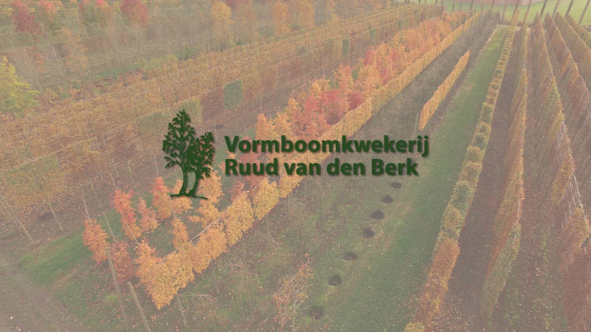 Ruud van den Berk icoon